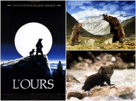L'ours 1-1